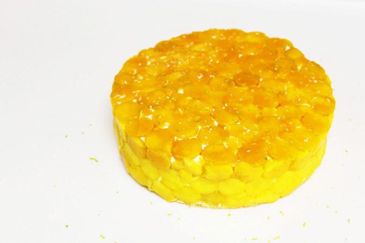 Gâteau Mangue Noix de Coco